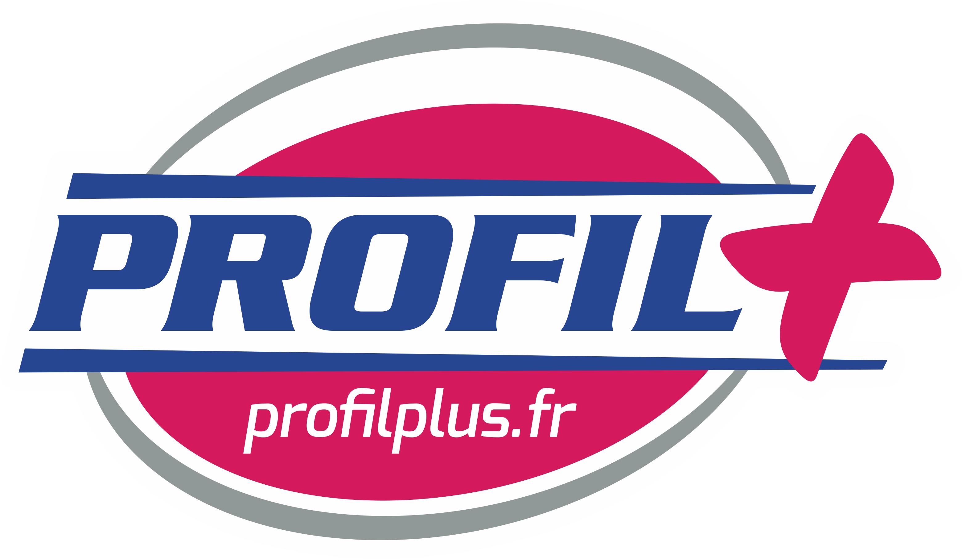 logo PROFIL+.png